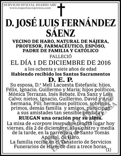 José Luis Fernández Sáenz